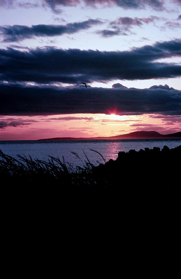 Lake Sunset Photograph - Lake Sunset by Jim Cotton