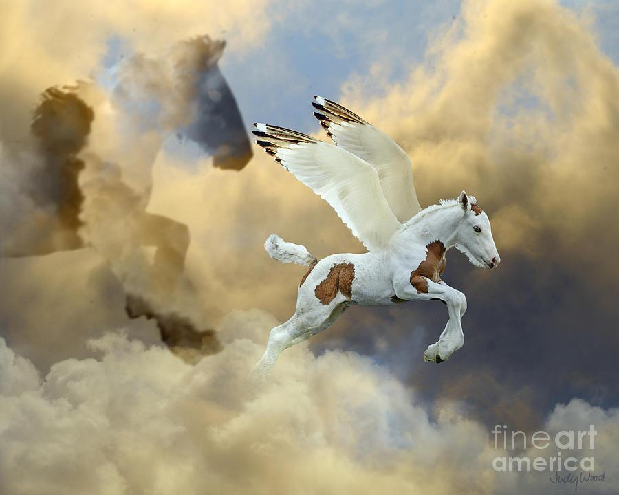 Horse Digital Art - Cloud Mother by Judy Wood