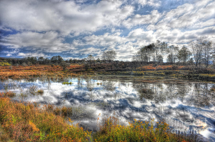 Clouds Photograph - Cloud Reflections In Beaver Pond Canaan Valley by Dan Friend