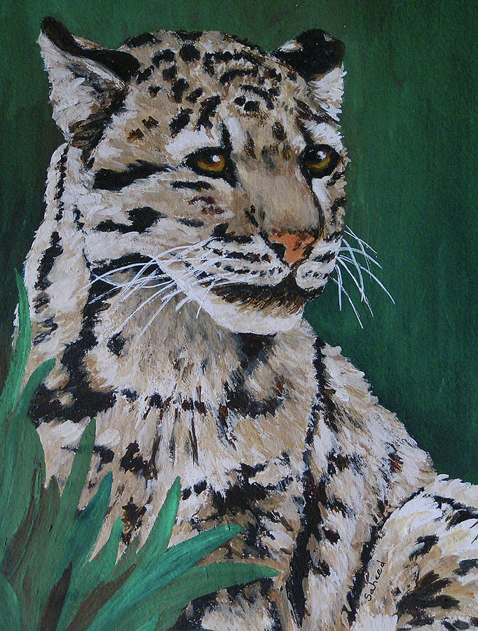 Clouded Leopard Painting - Clouded Leopard by Margaret Saheed
