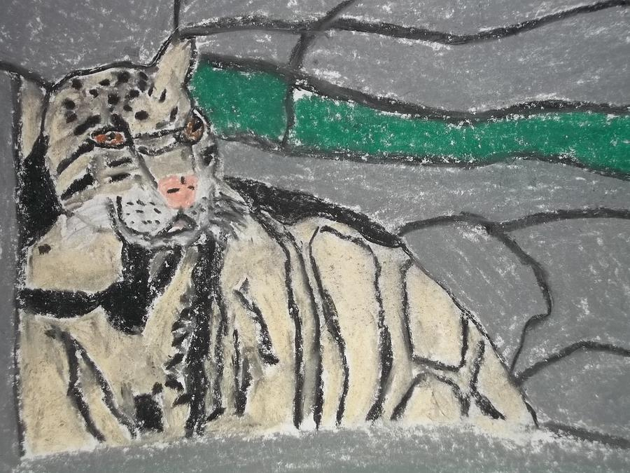 Leopard Painting - Clouded Leopard Pastel On Paper by William Sahir House