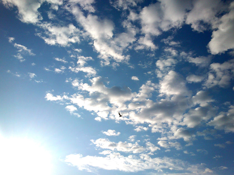Clouds Photograph - Clouds by Lucy D