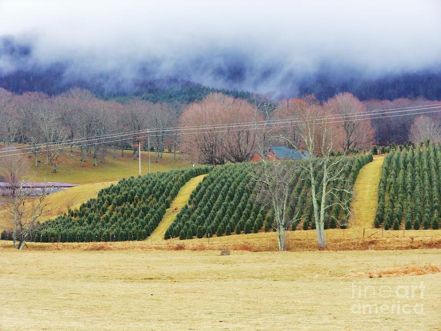 Mountains Photograph - Clouds Meet Mountain by Beebe  Barksdale-Bruner