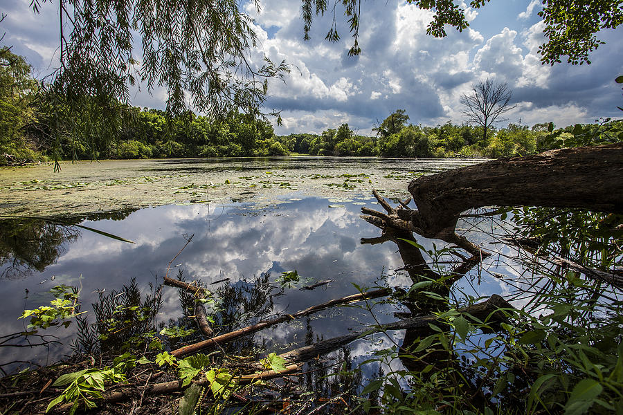 5d Mark Ii Photograph - Clouds On The Water by CJ Schmit