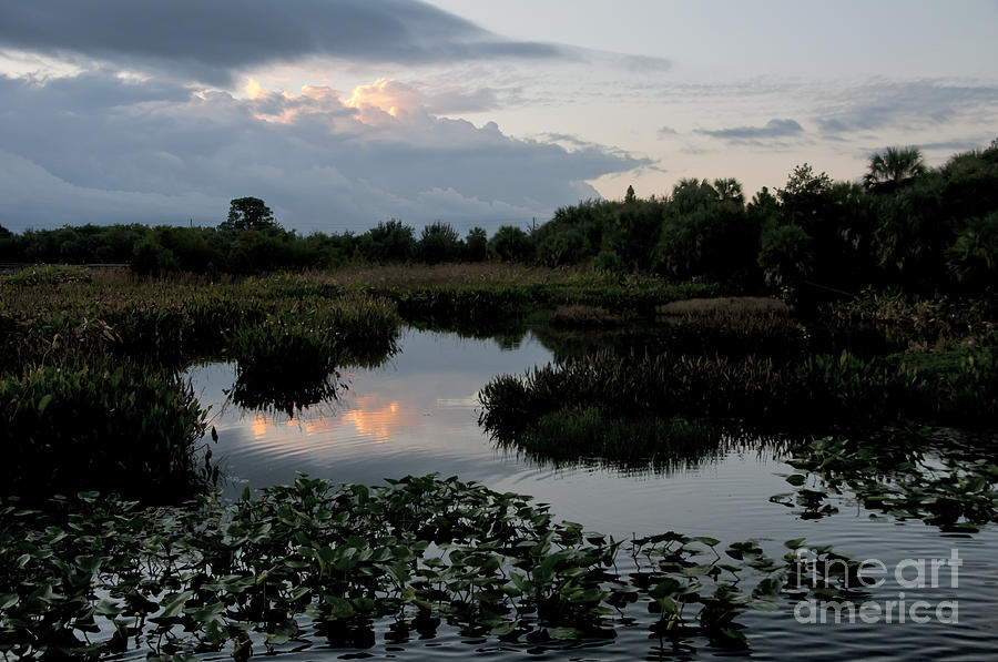 Nature Photograph - Clouds Over Green Cay Wetlands by Mark Newman