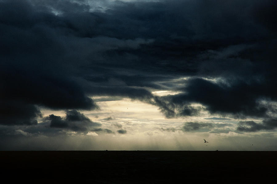 35mm Photograph - Clouds Sunlight And Seagulls by Hakon Soreide