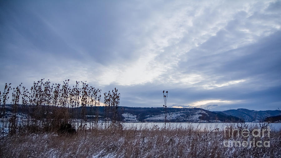 Clouds Photograph - Cloudy Daybreak Dry Thistles by Jivko Nakev