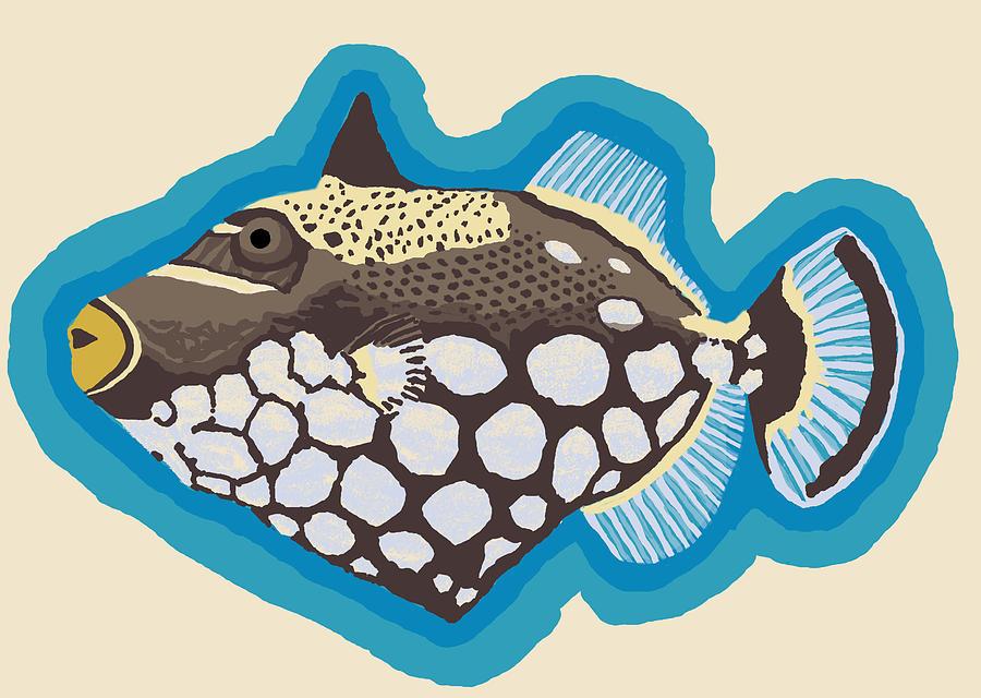 Clown Triggerfish by David Burkart