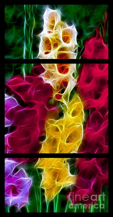 Gladiola Digital Art - Cluster Of Gladiolas Triptych  by Peter Piatt