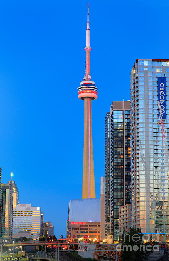 America Photograph - CN Tower by Night by Inge Johnsson