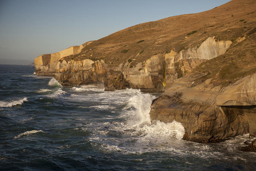 Coast And Tunnel Beach Otago New Zealand Photograph by Colin Monteath
