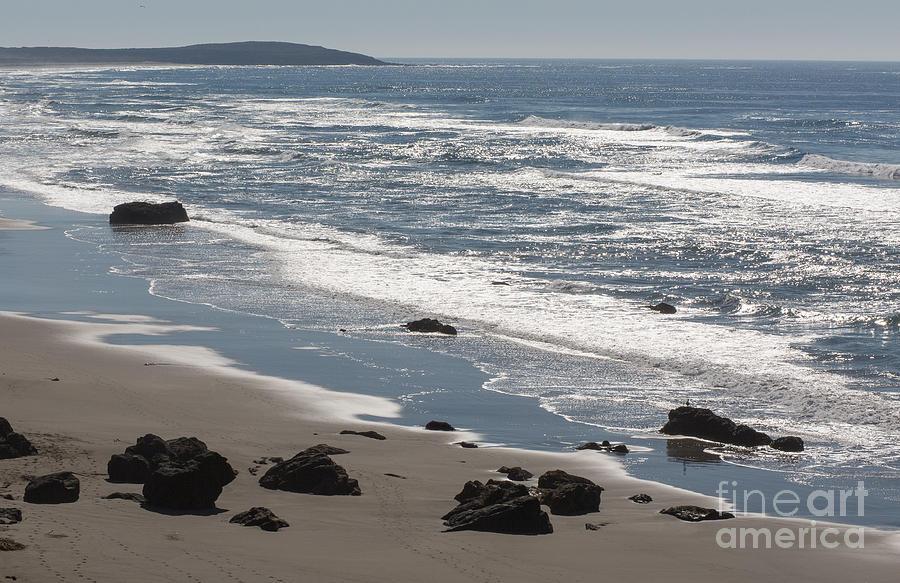 Bodega Bay Photograph - Coast Near Bodega Bay - 355 by Stephen Parker
