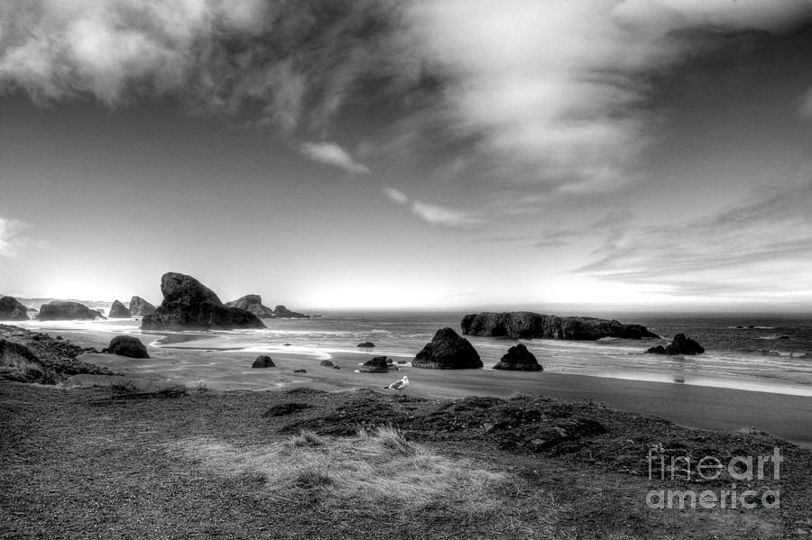 Oregon Photograph - Coast Of Dreams 6 Bw by Mel Steinhauer