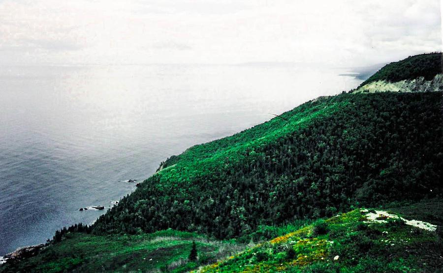 nova Scotia Photograph - Coast Of Nova Scotia by Christy Usilton