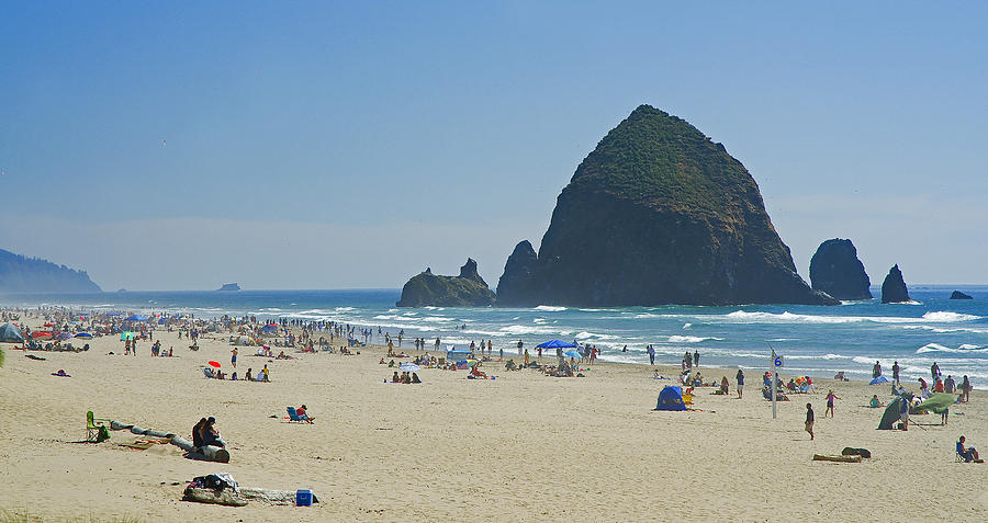 Pacific Photograph - Coastal Attraction by Nick  Boren