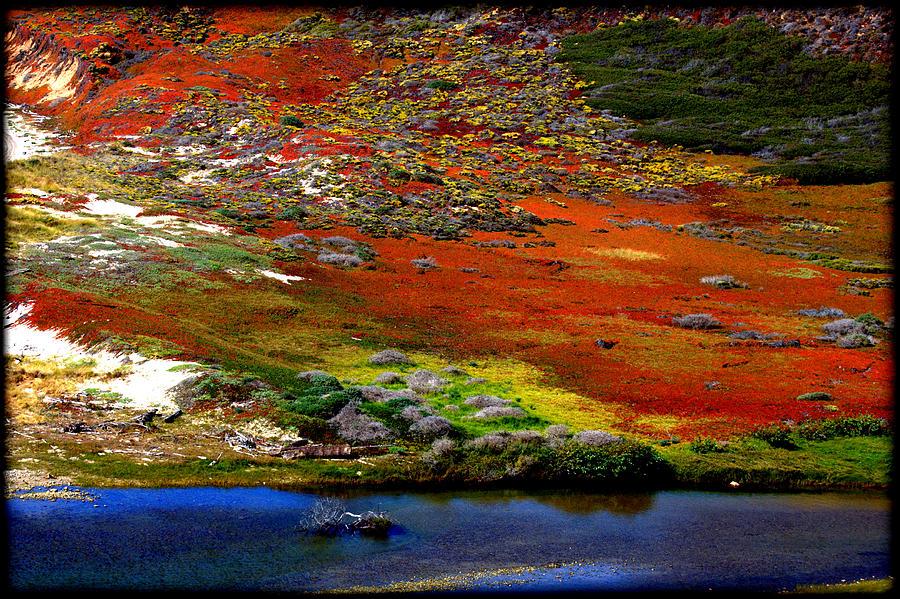 Ocean Photograph - Coastal Colors  by Daniel Jakus