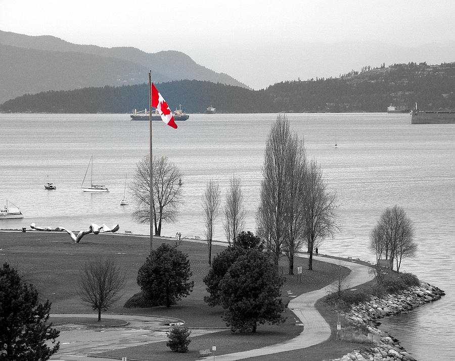 Photographs Photograph - Coastal Canadian Flag by Brian Chase