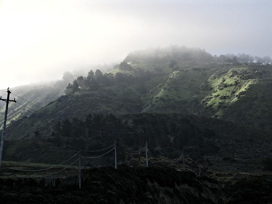 Green Photograph - Coastal Fog And Power Poles by Elery Oxford