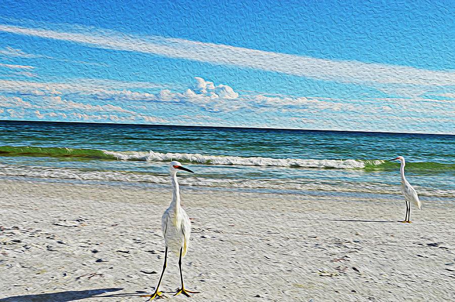 Still Photograph - Coastal Life by Sherry Allen