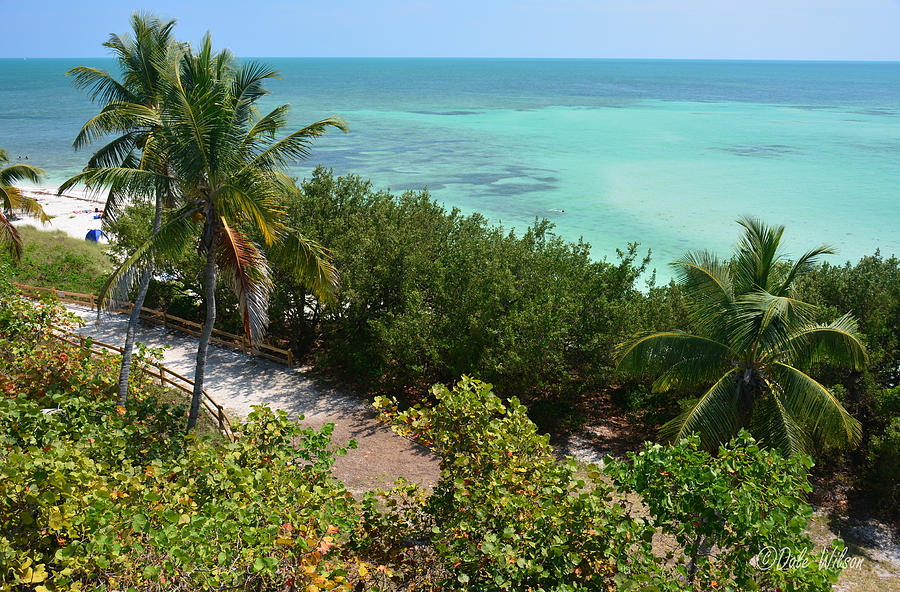 Florida Photograph - Coastal Overlook by Dale Wilson
