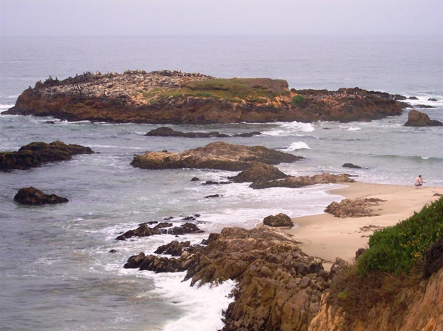 Coast Photograph - Coastal Scene 9 by Pharris Art