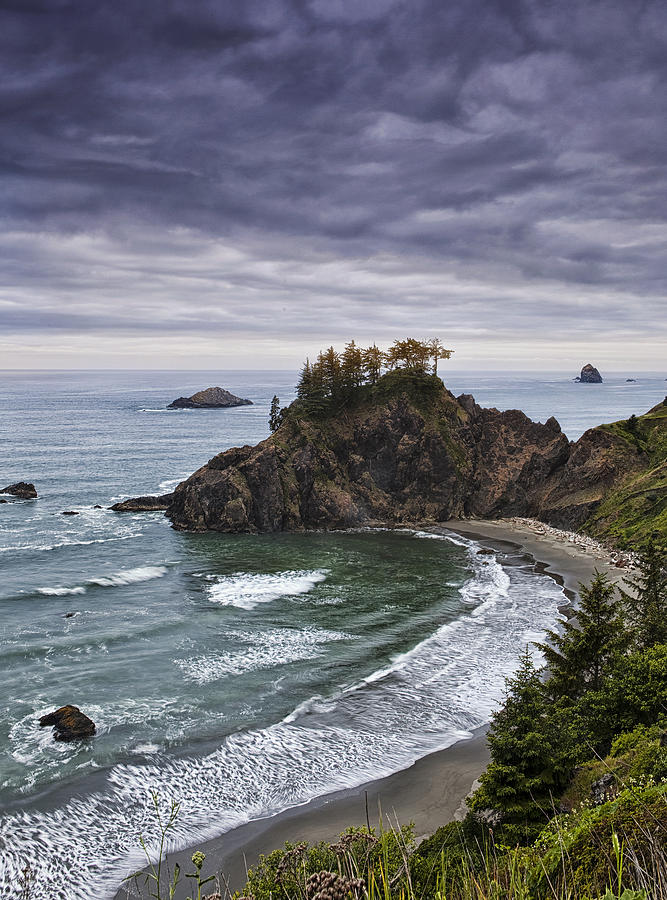 Oregon Photograph - Coastal Views by Andrew Soundarajan