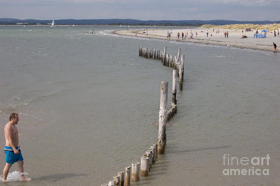 Coastal Vision Photograph by Hugh Reynolds