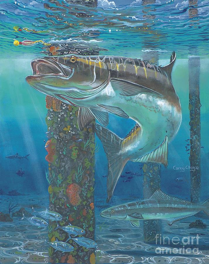 Cobia strike in0024 painting by carey chen for Red fish taste