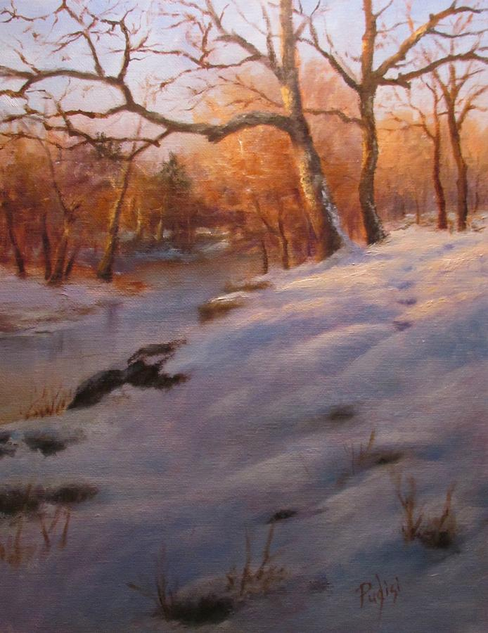 Cocalico Snow by Bill Puglisi