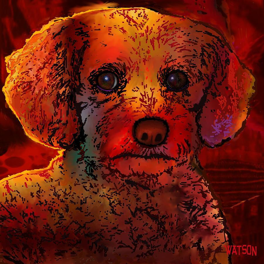 Cockapoo Dog Digital Art by Marlene Watson