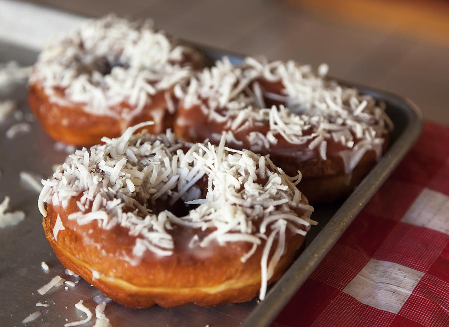 Coconut Covered Donuts Photograph by Debra Brash / Design Pics