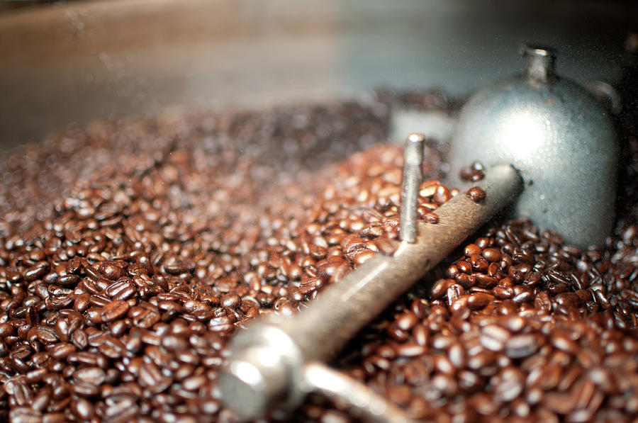 Coffee Beans Being Cooled After Roasting Photograph by Cowlickcreative
