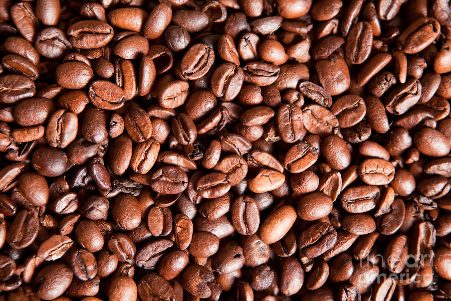 Coffee Photograph - Coffee Beans  by Sharon Dominick