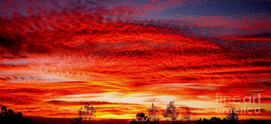 Sun Rise Photograph - Coffee On by Greg Patzer