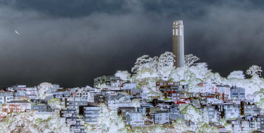 Tower Photograph - Coit Tower Surreal by Diego Re