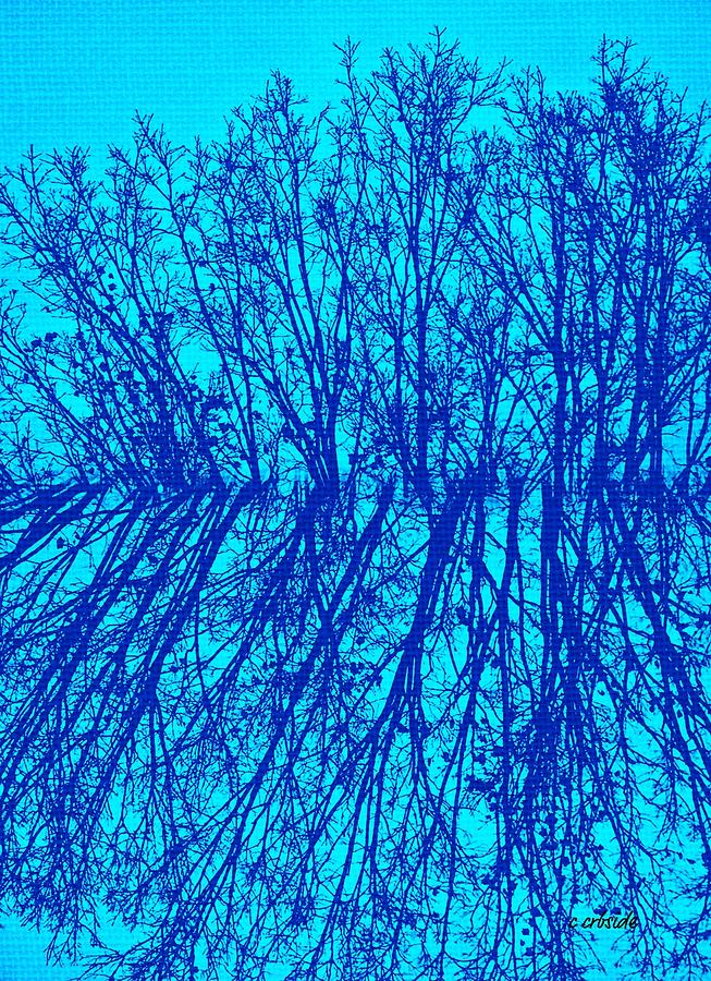 Earthy Photograph - Cold Blue by Chris Berry