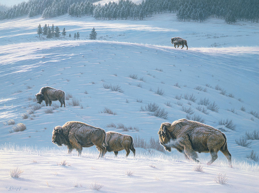 Wildlife Painting - Cold Day At Lamar by Paul Krapf