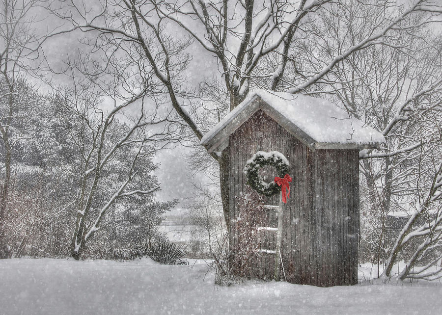 Outhouse Photograph - Cold Seat by Lori Deiter