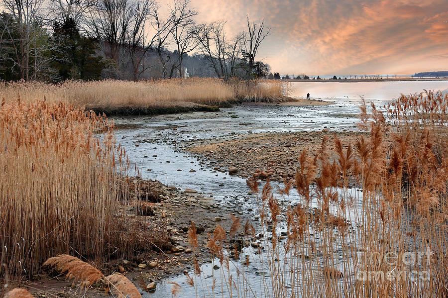 Cold Spring Harbor at sunset by Bobbie Turner