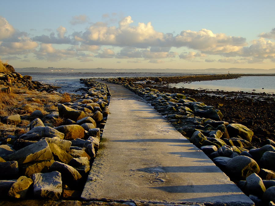 Cold Winter Path by Nigel Cameron