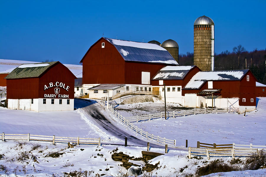A.b. Cole Photograph - Cole Dairy Farm by David Simons