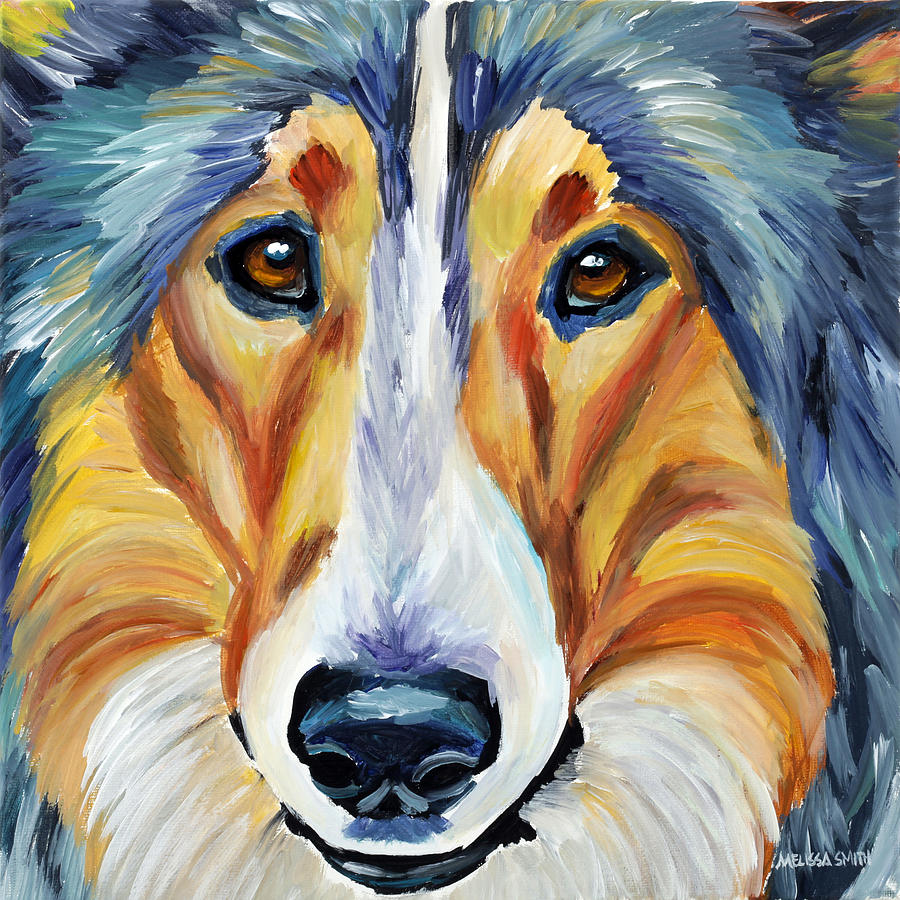 Collie Painting - Collie by Melissa Smith