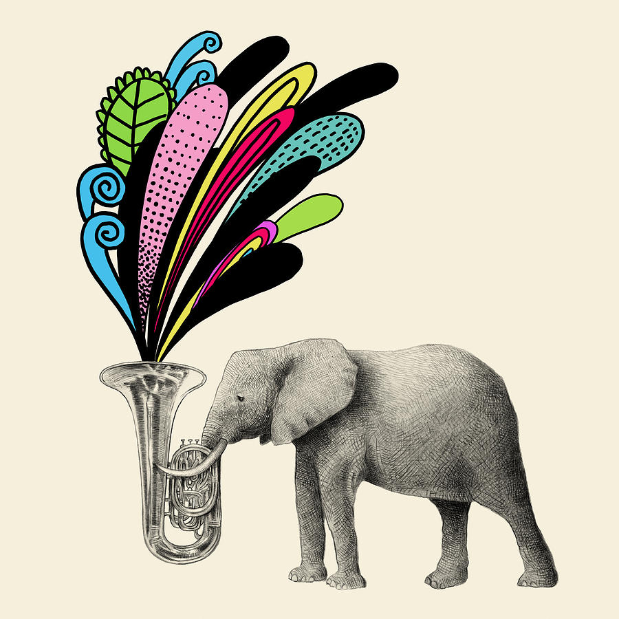 Elephant Drawing - Color Burst by Eric Fan