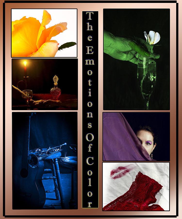 Color Photograph - Color Collage by Camille Lopez