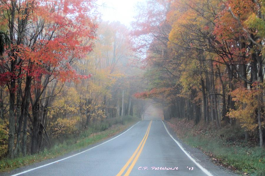 Autumn Photograph - Color In The Country by Carolyn Postelwait