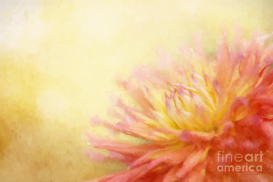 Yellow Photograph - Color Me Happy V2 by Beve Brown-Clark Photography
