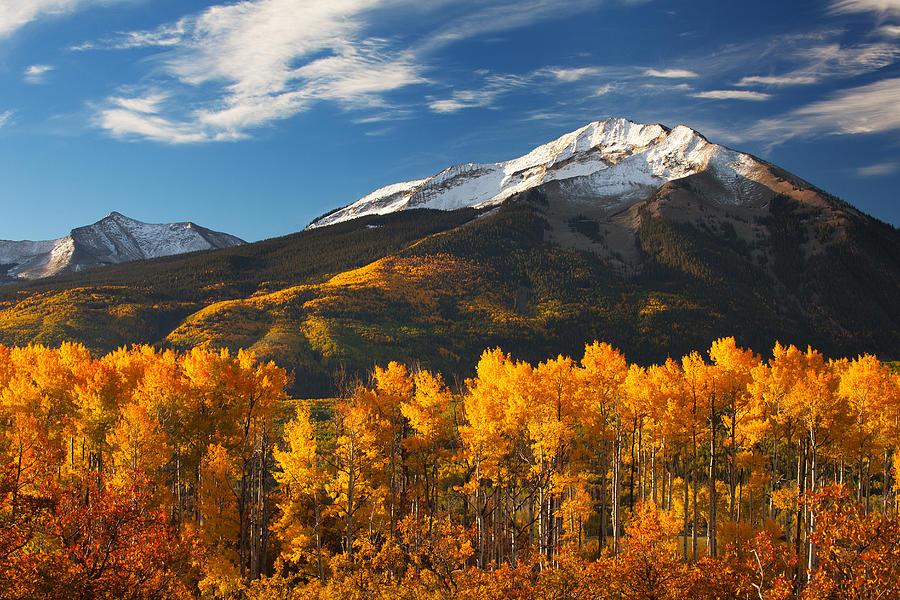 Colorado Gold Photograph