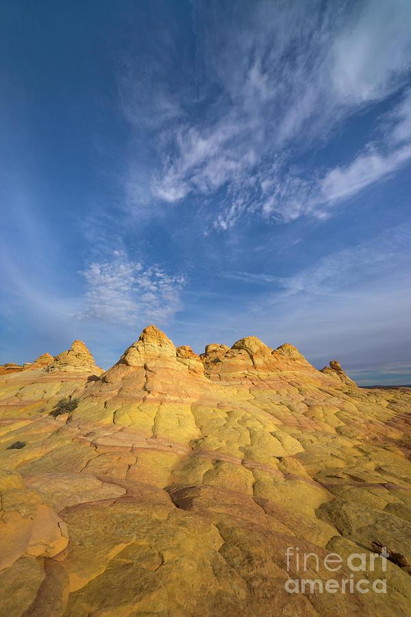 Colorado Plateau Coyote Buttes Arizona Photograph by Yva Momatiuk and John Eastcott