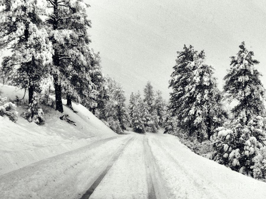 Colorado Winter 2 by Karla Weber