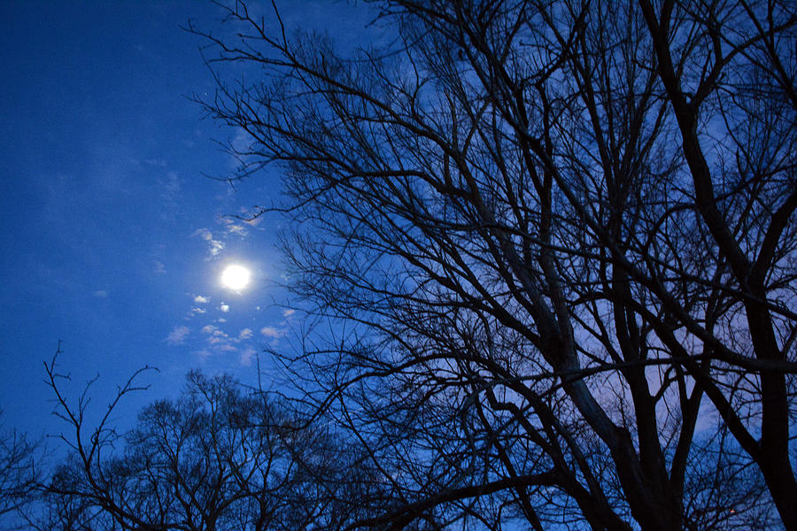Moon Photograph - Colored Hues Of A Full Moon by Bill Helman